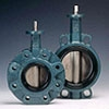 Wafer and Lug Type Butterfly Valve with Bare Shaft