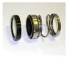 SFSS S560- Mechanical Seal